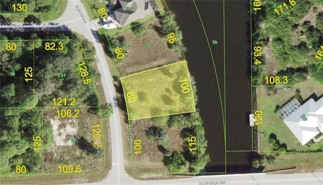 8138 Santa Cruz Drive, Port Charlotte, FL 33981 (MLS #D6115059) :: The BRC Group, LLC