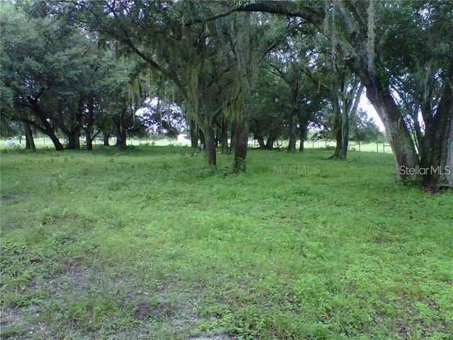 5019 NW Lyons Street, Arcadia, FL 34266 (MLS #D6115161) :: Young Real Estate