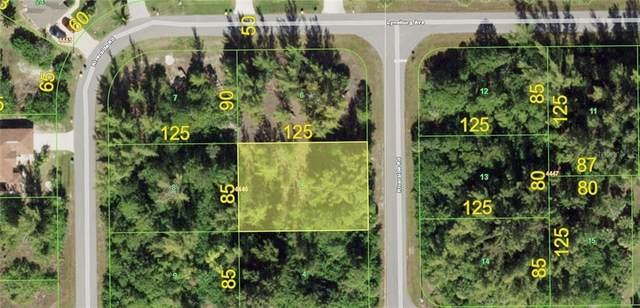 10435 Riverside Road, Port Charlotte, FL 33981 (MLS #D6115210) :: Bridge Realty Group