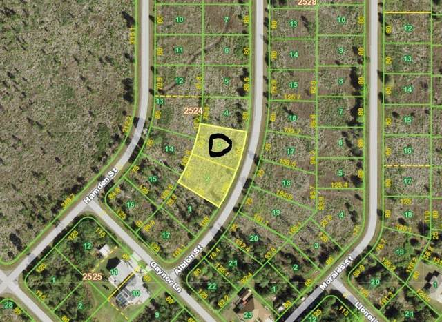 257 Albion Street, Port Charlotte, FL 33953 (MLS #D6115277) :: Young Real Estate