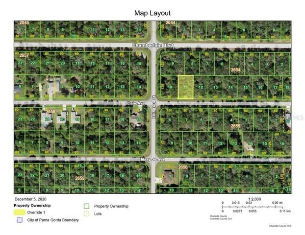 14214 Cain Avenue, Port Charlotte, FL 33953 (MLS #D6115284) :: Alpha Equity Team
