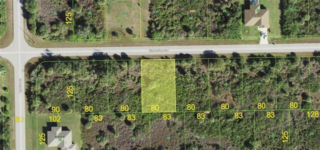 13395 High Springs Avenue, Port Charlotte, FL 33981 (MLS #D6115474) :: Young Real Estate