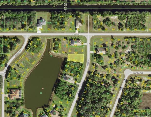 224 Antilla Drive, Rotonda West, FL 33947 (MLS #D6115554) :: Griffin Group
