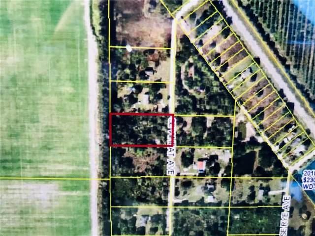 4509 SE Wheat Avenue, Arcadia, FL 34266 (MLS #D6115585) :: Young Real Estate