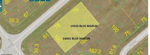 14333 Blue Marlin Road, Placida, FL 33946 (MLS #D6115666) :: The BRC Group, LLC