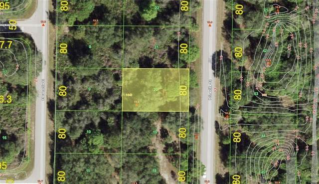 343 Prineville Street, Port Charlotte, FL 33954 (MLS #D6115706) :: Young Real Estate