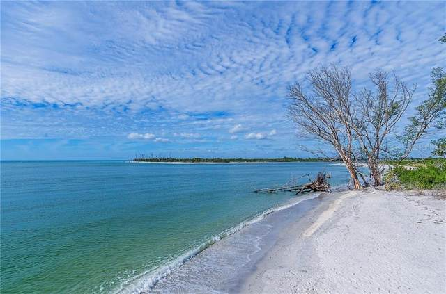 6850 Palm Island Drive, Placida, FL 33946 (MLS #D6115731) :: The BRC Group, LLC