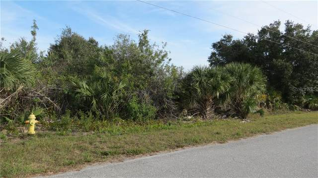 13428 Cedar City Avenue, Port Charlotte, FL 33981 (MLS #D6115776) :: The Heidi Schrock Team