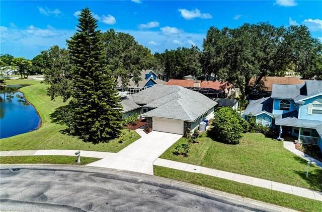3743 Bonaventure Lane, Sarasota, FL 34243 (MLS #D6116077) :: Everlane Realty