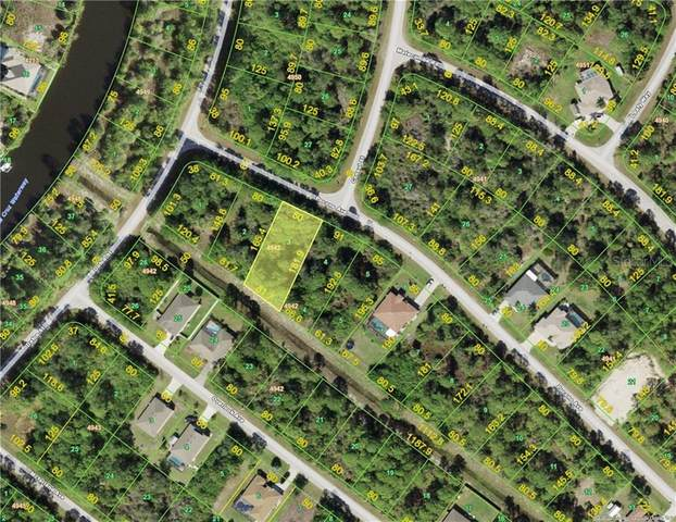 14313 Pocono Avenue, Port Charlotte, FL 33981 (MLS #D6116169) :: New Home Partners