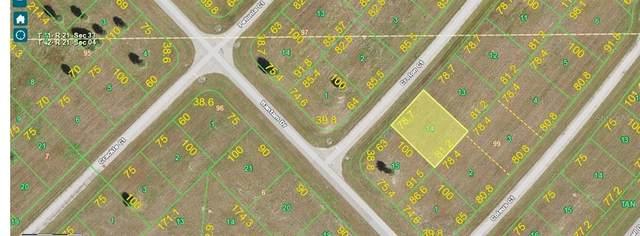 4 Croton Court, Placida, FL 33946 (MLS #D6116267) :: The BRC Group, LLC