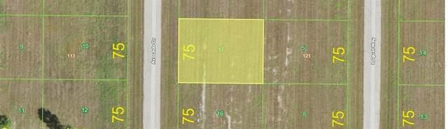 33 Avocado Drive, Placida, FL 33946 (MLS #D6116280) :: The BRC Group, LLC