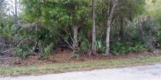 23447 Buckner Avenue, Port Charlotte, FL 33980 (MLS #D6116632) :: Sarasota Property Group at NextHome Excellence