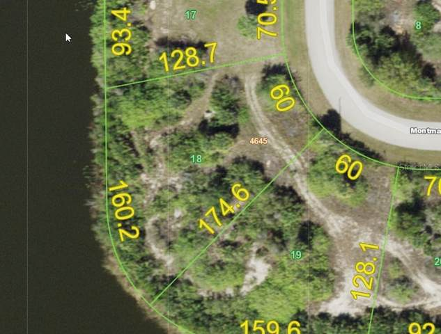14275 Montmarte Avenue, Port Charlotte, FL 33981 (MLS #D6116976) :: Southern Associates Realty LLC