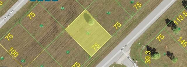 12209 Quail Drive, Placida, FL 33946 (MLS #D6117613) :: The Lersch Group