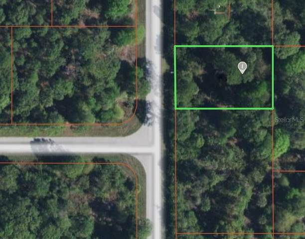 7018 Princeton Street, Port Charlotte, FL 33981 (MLS #D6117829) :: Realty Executives Mid Florida