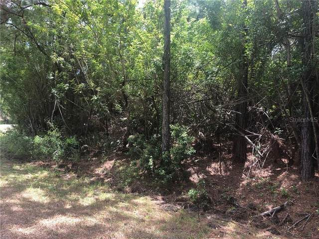 17124 Belmont Avenue, Port Charlotte, FL 33948 (MLS #D6117852) :: Sarasota Home Specialists