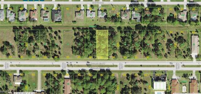 246 Rotonda Boulevard W, Rotonda West, FL 33947 (MLS #D6117886) :: McConnell and Associates