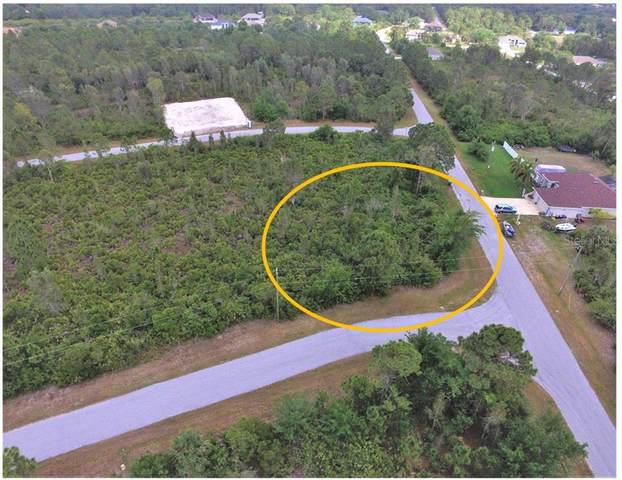 8244 Dressel Street, Port Charlotte, FL 33981 (MLS #D6117983) :: Florida Real Estate Sellers at Keller Williams Realty