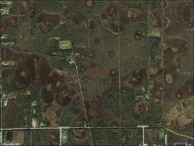 33406 Oil Well Road, Punta Gorda, FL 33955 (MLS #D6118022) :: Rabell Realty Group