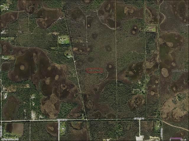 33412 Oil Well Road, Punta Gorda, FL 33955 (MLS #D6118025) :: Rabell Realty Group