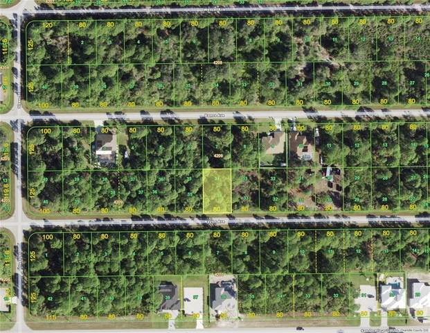 14136 Naylor Avenue, Port Charlotte, FL 33981 (MLS #D6118101) :: Your Florida House Team