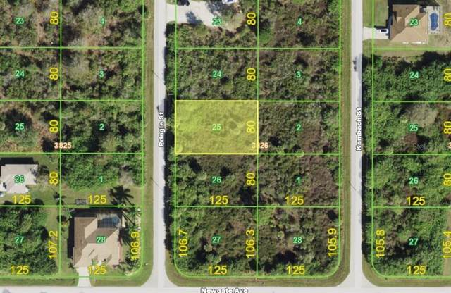 6232 Pringle Street, Port Charlotte, FL 33981 (MLS #D6118110) :: Medway Realty