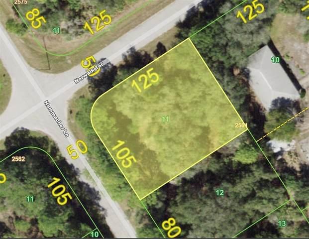 1312 Hammacher Lane, Port Charlotte, FL 33953 (MLS #D6118162) :: RE/MAX Local Expert