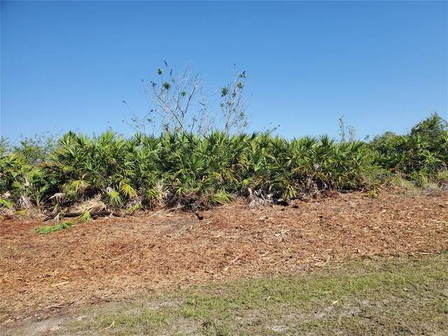 27071 Del Prado Parkway, Punta Gorda, FL 33983 (MLS #D6118380) :: The Lersch Group