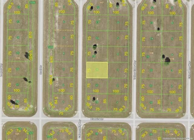 24 Calamondin (Lot 16) Way, Placida, FL 33946 (MLS #D6118492) :: Rabell Realty Group