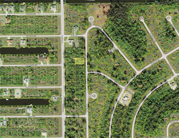 10302 Abello Road, Port Charlotte, FL 33981 (MLS #D6118497) :: Southern Associates Realty LLC