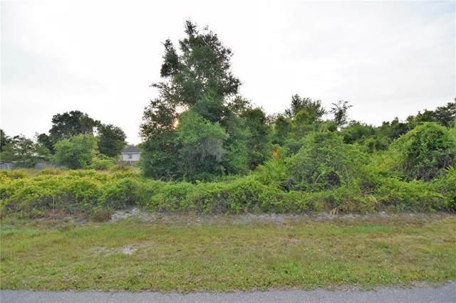 324 Omen Street, Punta Gorda, FL 33982 (MLS #D6118501) :: Armel Real Estate