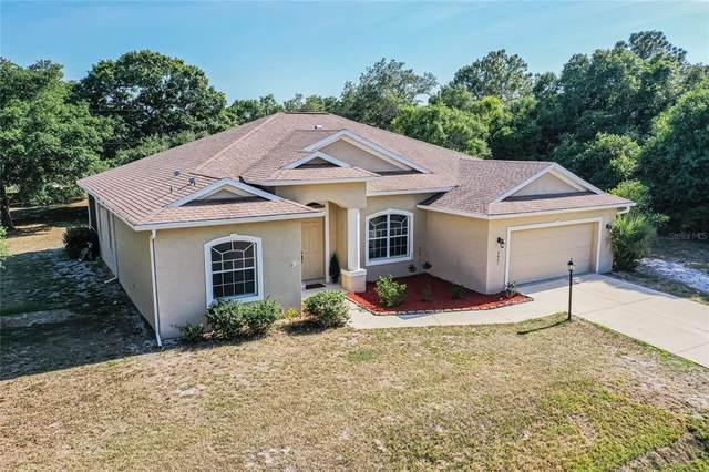 3621 Massini Avenue, North Port, FL 34286 (MLS #D6118623) :: Armel Real Estate