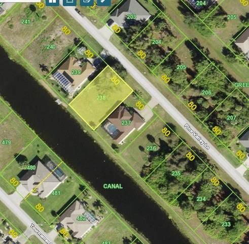 34 Pine Valley Lane, Rotonda West, FL 33947 (MLS #D6118641) :: Bob Paulson with Vylla Home