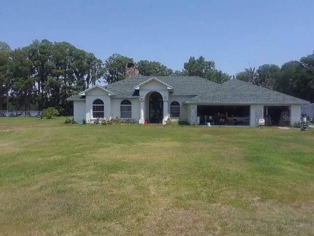 18933 Shettle Road, Land O Lakes, FL 34637 (MLS #D6118648) :: Gate Arty & the Group - Keller Williams Realty Smart