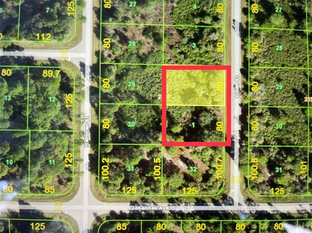 351& 359 Liden Street, Port Charlotte, FL 33953 (MLS #D6118687) :: The Lersch Group