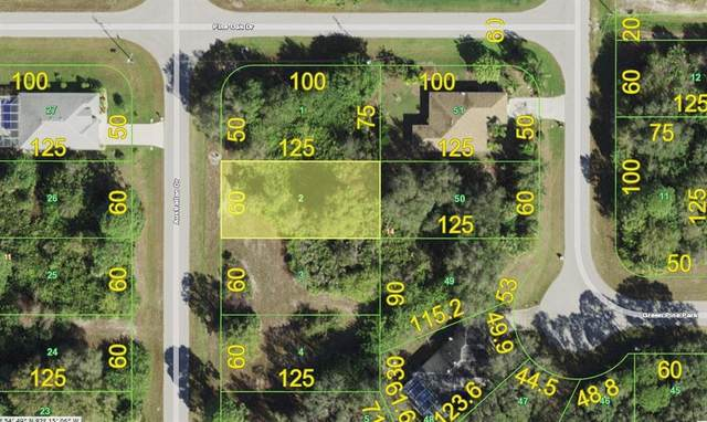 118 Australian Drive, Rotonda West, FL 33947 (MLS #D6118716) :: Premier Home Experts