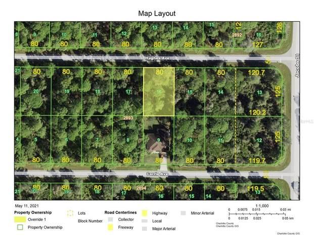 13483 Hughes Avenue, Port Charlotte, FL 33953 (MLS #D6118719) :: Southern Associates Realty LLC