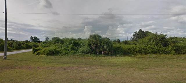 13474 Appleton Boulevard, Port Charlotte, FL 33981 (MLS #D6118742) :: Premium Properties Real Estate Services
