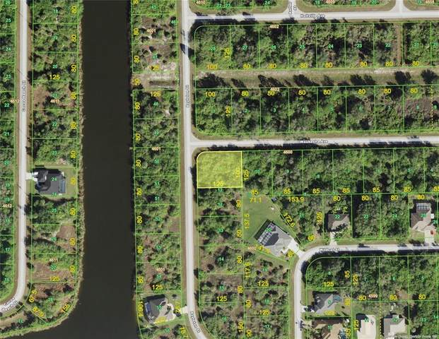 10110 Boylston Street, Port Charlotte, FL 33981 (MLS #D6118819) :: Premium Properties Real Estate Services