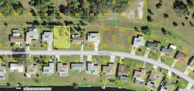 179 Annapolis Ln, Rotonda West, FL 33947 (MLS #D6118868) :: The Kardosh Team