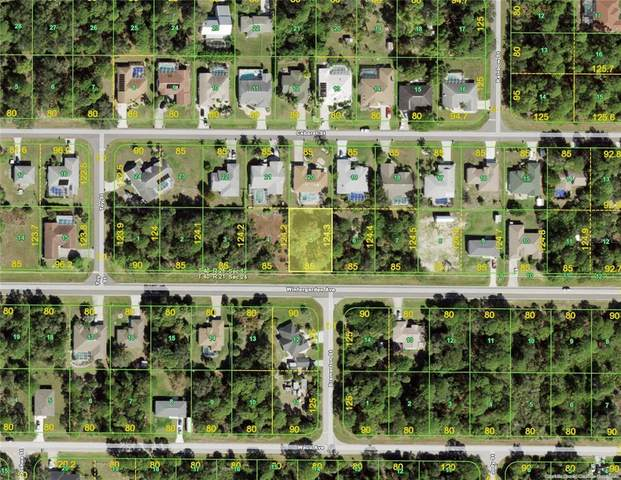 17458 Wintergarden Avenue, Port Charlotte, FL 33948 (MLS #D6119091) :: Everlane Realty