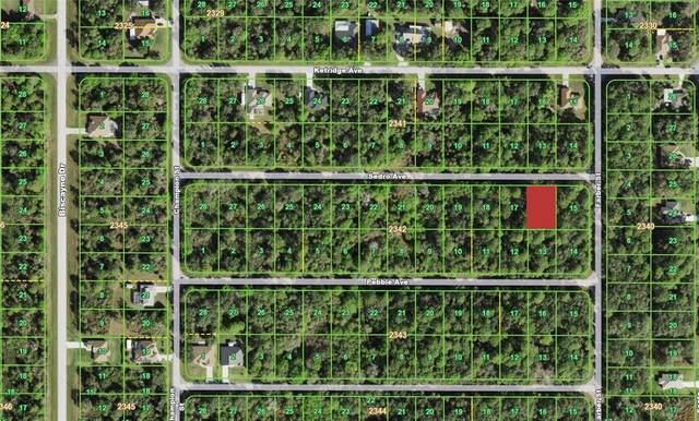 13405 Sedro Avenue, Port Charlotte, FL 33953 (MLS #D6119125) :: The Hustle and Heart Group