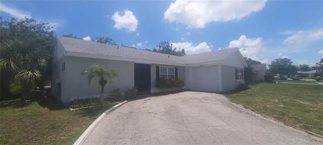 8001 Lombra Avenue, North Port, FL 34287 (MLS #D6119155) :: The Light Team