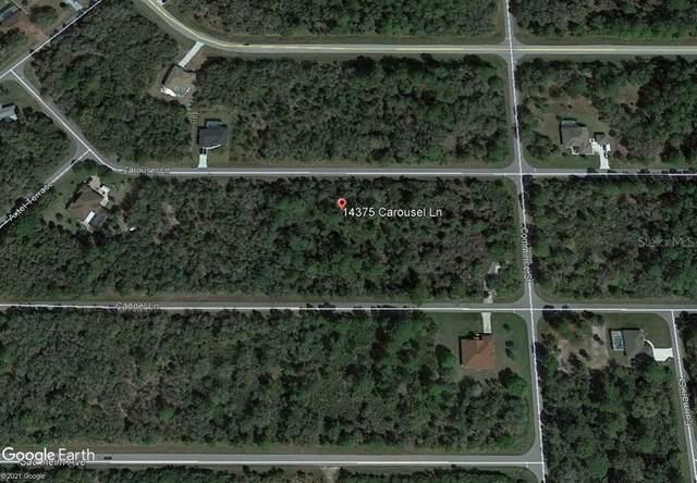 14375 Carousel Lane, Port Charlotte, FL 33953 (MLS #D6119184) :: Team Pepka