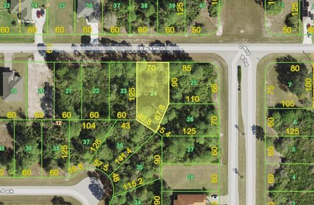 177 Baytree Drive, Rotonda West, FL 33947 (MLS #D6119365) :: The Robertson Real Estate Group