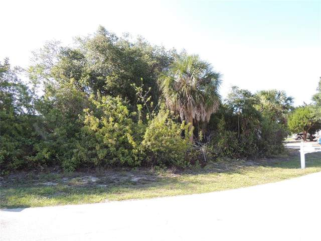 11330 Seabreeze Avenue, Port Charlotte, FL 33981 (MLS #D6119400) :: The Hustle and Heart Group