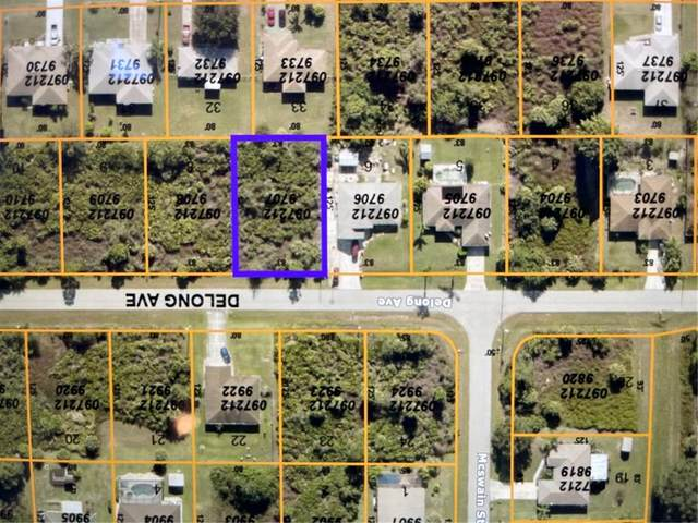 Delong Avenue, North Port, FL 34291 (MLS #D6119436) :: Vacasa Real Estate