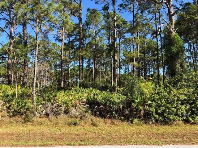 5259 Lambright Drive, Port Charlotte, FL 33981 (MLS #D6119604) :: The Price Group