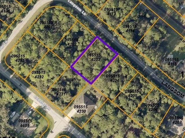 Langsom Lane, North Port, FL 34286 (MLS #D6119608) :: Team Pepka